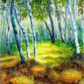 Grassy Path among Poplars